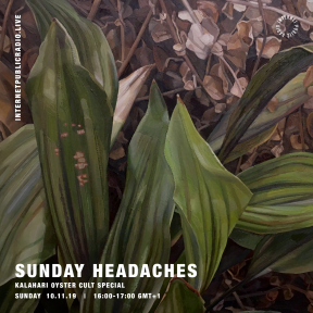 Sunday Headaches #15 Kalahay Oyster Cult Special