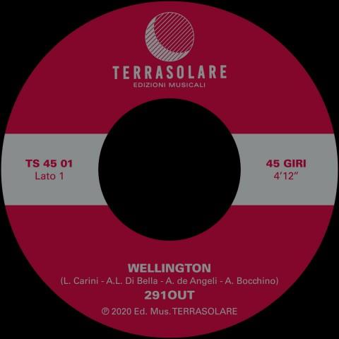 Wellington w/291ou